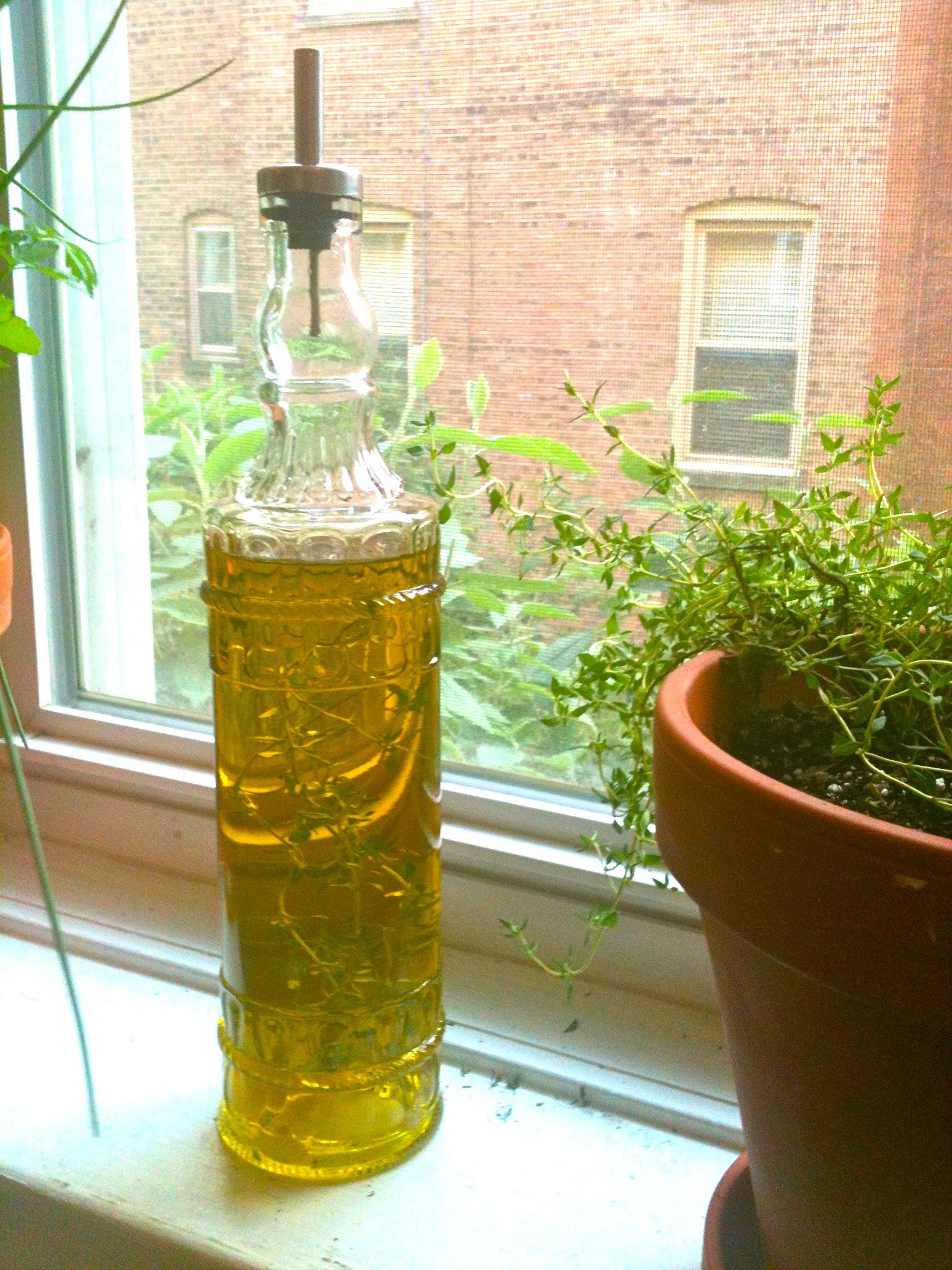 windowsill herb garden and garlic thyme olive oil u2013 kellyinthekitchen