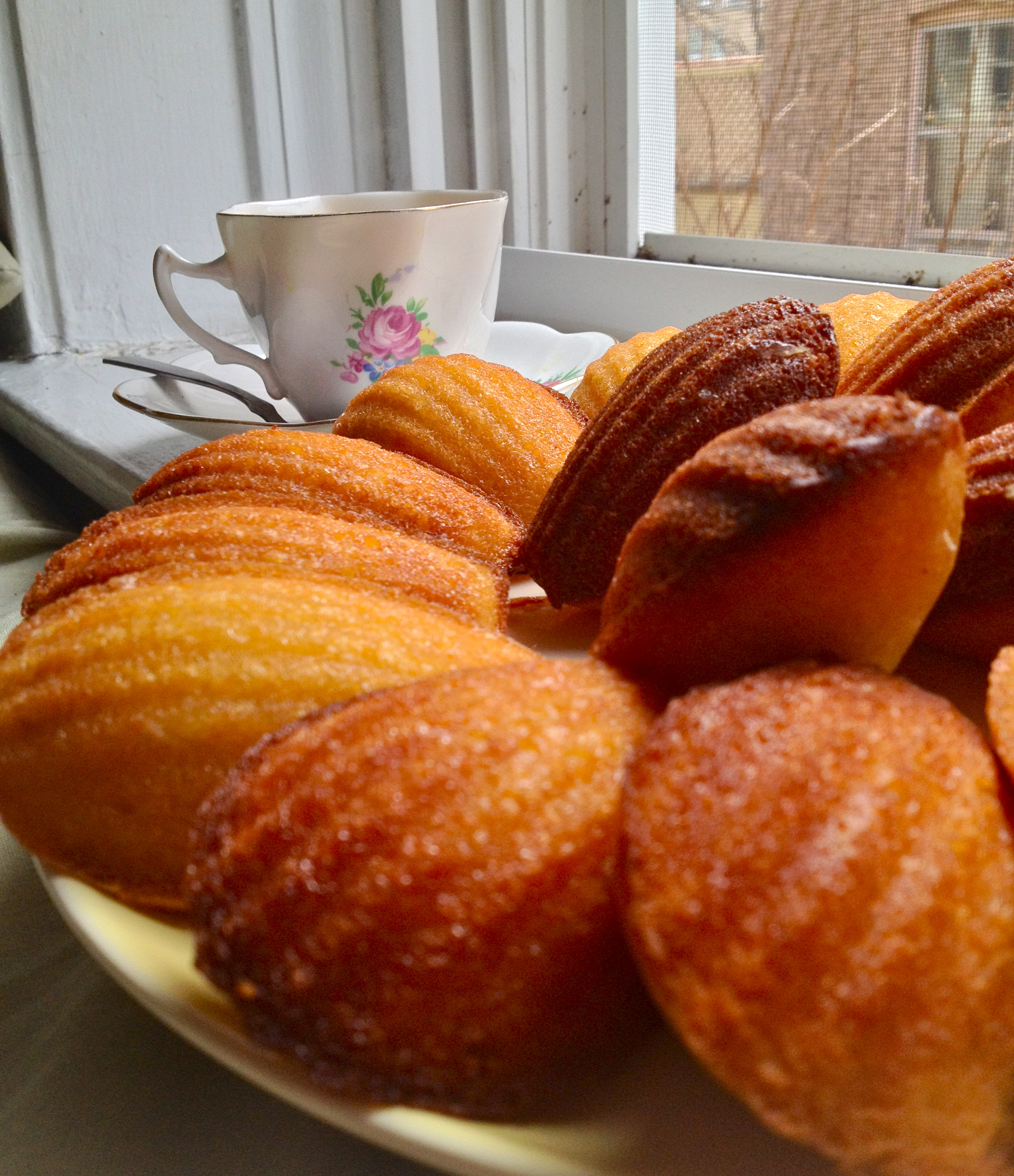 Glazed Lemon Madeleines. – KellyintheKitchen